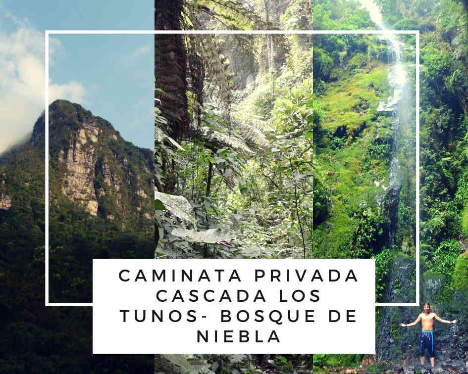 Tour Privado Los Tunos i